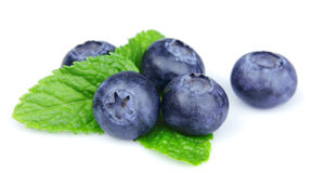 Blueberries with leaf Stock Photography