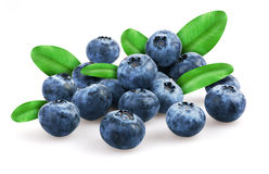 Blueberries with leafs Royalty Free Stock Image