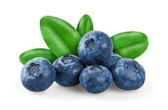 Blueberries with leafs Royalty Free Stock Images