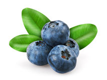 Blueberries with leafs Stock Photo