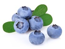 Blueberries with leaves close-up isolated on a white. stock photography