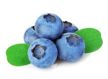 Blueberries with leaves close-up isolated on a white. royalty free stock image