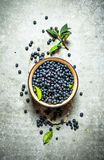 Blueberries with leaves in a Cup. On stone table. Stock Photos
