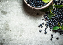 Blueberries with leaves in a Cup. On stone table. Royalty Free Stock Photography