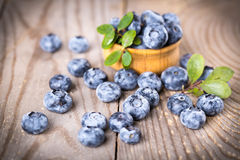 Blueberries with leaves Stock Photography
