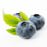 Blueberries with leaves Royalty Free Stock Photography