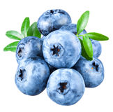 Blueberries with leaves on white background Royalty Free Stock Photography