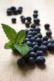 Blueberries & lemon balm leaves Royalty Free Stock Photo