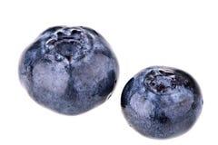 Blueberries macro Royalty Free Stock Photography