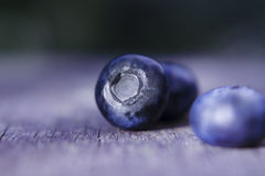 Blueberries. Macro blueberrie on rustic background Stock Photography