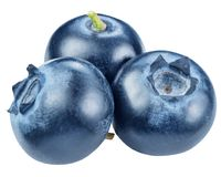 Blueberries. Macro shot. File contains clipping paths. Royalty Free Stock Photography