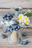 Blueberries in a metal tableware Royalty Free Stock Photos