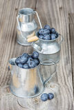 Blueberries in a metal tableware Stock Images