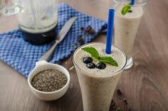 Blueberries milk shake Stock Images