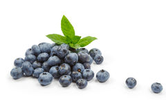 Blueberries with mint on white background Stock Image