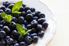 Blueberries and mint on a white plate on white background Stock Images