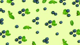 Blueberries and mints Stock Photos