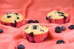 Blueberries muffin Stock Photo