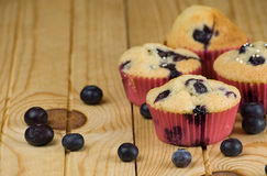Blueberries muffin Royalty Free Stock Photography