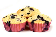 Blueberries muffin Stock Photography
