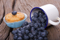 Blueberries and Muffin Royalty Free Stock Photos