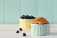 Blueberries muffin Royalty Free Stock Images