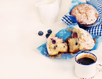 Blueberries muffins Stock Images