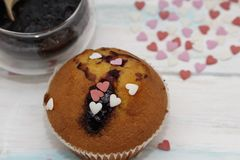 Blueberries muffins or cupcakes on white texture stock photography