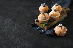 Free Blueberries Muffins Or Cupcakes With Mint Leaves On Black Texture Royalty Free Stock Photos - 107738478