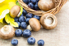 Blueberries and mushrooms in basket Royalty Free Stock Image