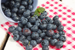 Blueberries. Organic Blueberries on wooden table Stock Image