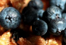 Blueberries Over Oatmeal Stock Photos