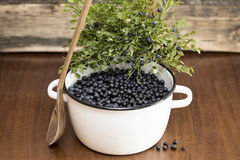 Blueberries in a pan. On a wooden background royalty free stock photography