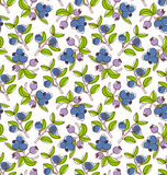 Blueberries pattern Royalty Free Stock Photos