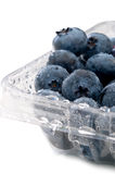 Blueberries in a plastcic clear container Stock Photos