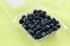 Blueberries in a Plastic Box Stock Image