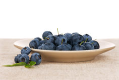 Blueberries on plate Stock Image