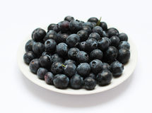 Blueberries on the plate. A large plate of ripe forest blueberries Stock Photos