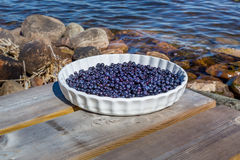 Blueberries on a plate outdoors. Stock Photo