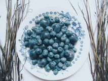 Blueberries and plums lying on a plate Stock Photos