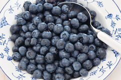 Blueberries in a pretty dish. Freshly washed blueberries in a pretty blue and white dish Royalty Free Stock Photo
