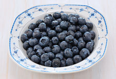 Blueberries in a pretty dish. Freshly washed blueberries in blue and white bowl on rustic white background Royalty Free Stock Photos