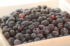 Blueberries. Put in a white plate Royalty Free Stock Photos