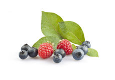 Blueberries and raspberries. With leaves isolated on white royalty free stock images