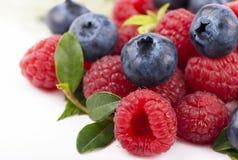 Blueberries & raspberries Royalty Free Stock Photo
