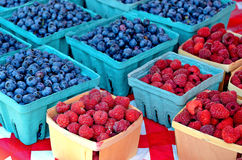 Blueberries and raspberries in boxes Stock Photography