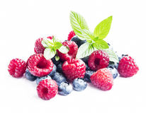 Blueberries and Raspberries with Mint Isolated Royalty Free Stock Photography