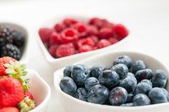 Blueberries raspberries strawberries blackberries Royalty Free Stock Photos