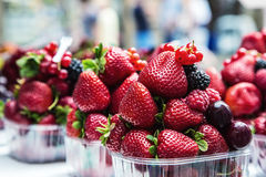 Blueberries, raspberries, strawberries, cherries Forest fruits. Gardening ,agriculture,harvest and forest concept. Berry fruits at a marketplace Blueberries Stock Photography