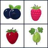 Blueberries, Raspberries, Strawberry,Gooseberry Stock Photos